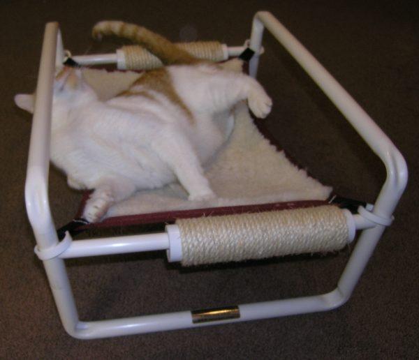 Kitten Bed Upper Arm