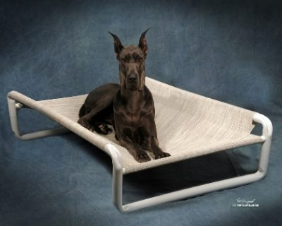 Chew Guard Dog Beds