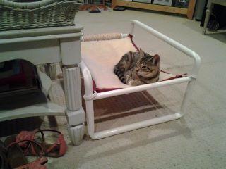 Outdoor Raised Kitty Bed
