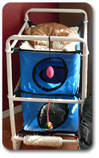 Where Does Your Cat Nap by Roverpet.com
