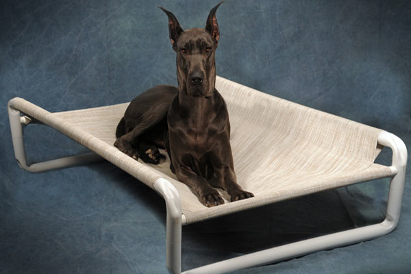Beds for the Pets at Roverpet.com : Made in the USA