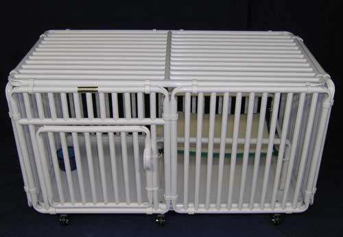 Kitten Cage