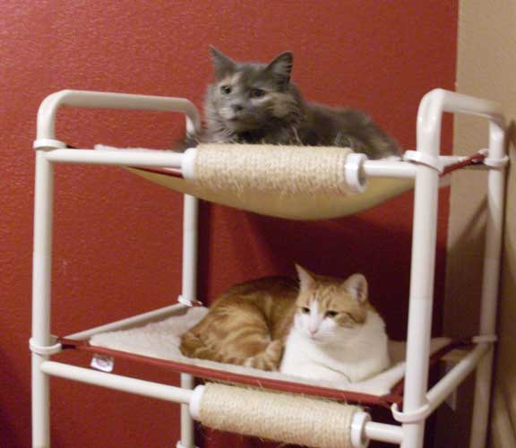 Two Level Cat Bed At Roverpet Com Usa Made Roverpet