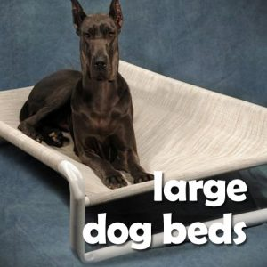 Large Dog Beds