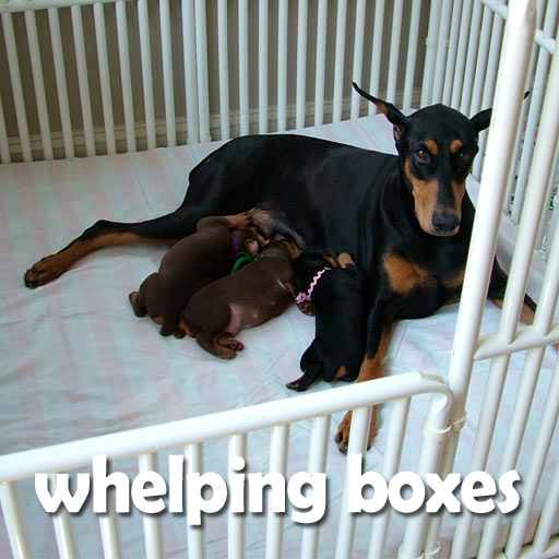 Roverpet Whelping Boxes