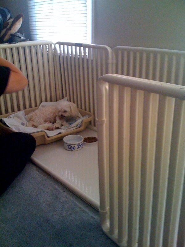 PVC Puppy Cage Floor