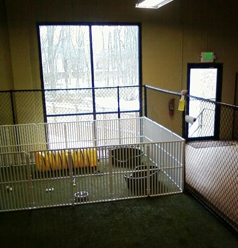 Heavy Duty Dog Exercise Pen