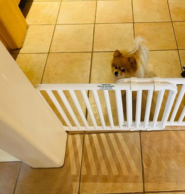 Extra Small Pooch Gate