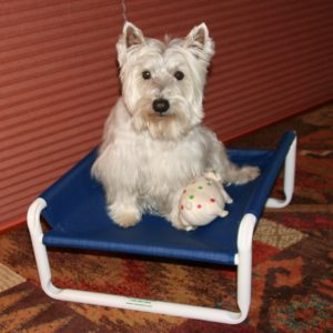 Small Pet Bed Frame