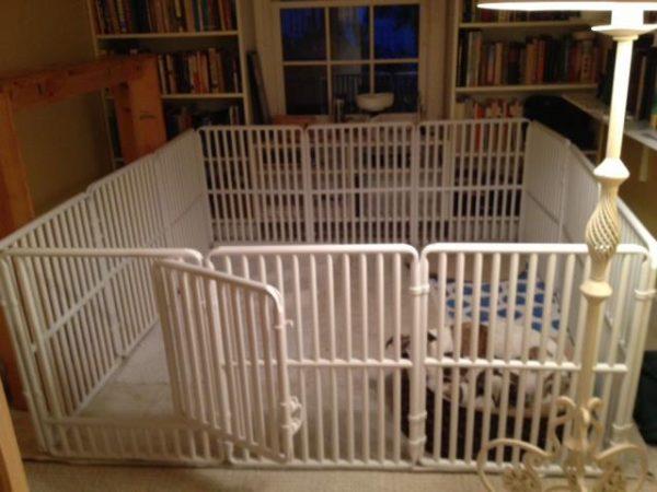Large Dog Enclosure