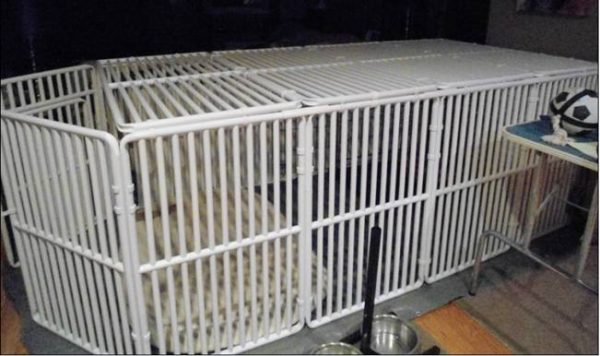 PVC Puppy Enclosure