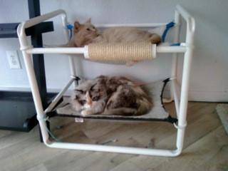 Indoor Raised Kitten Castle