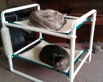 Indoor Raised Kitten Bed